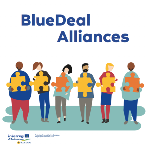 logo of the Blue Transantional Alliance