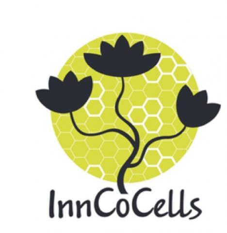 Logo InnoCoCells