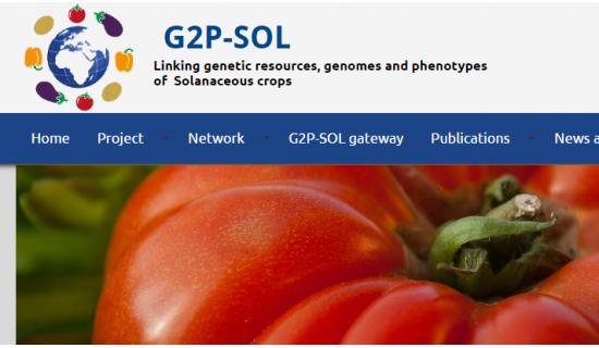 g2p-sol_0.png