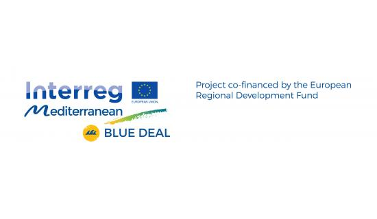 this is the logo of BlueDeal