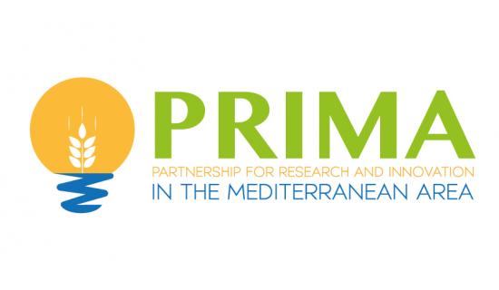 logo_prima_foundation.png
