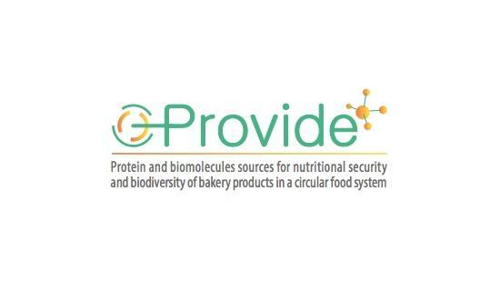 Logo Progetto Provide