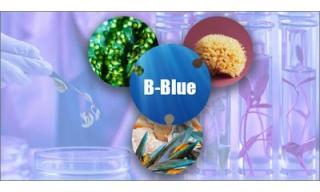 Progetto B-Blue