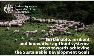 Leaflet FAO MOU