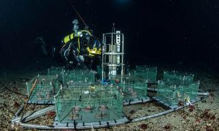 Installazione del laboratorio sottomarino nel mar di Ross in Antartide